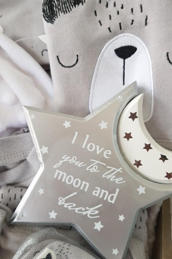 Gift Baby Hamper Bear & Moon