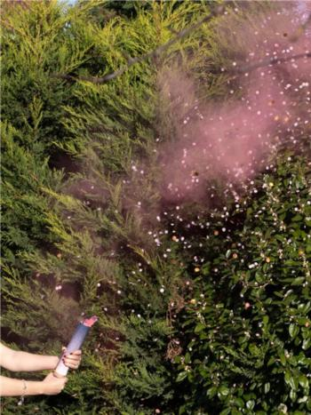 GENDER REVEAL PINK SMOKE CANNON